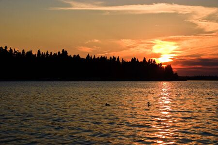 Orange sunset glow beyond a northern Canadian lake at twilight with the silhouette of trees in the foreground. Stock Photo - 6282712