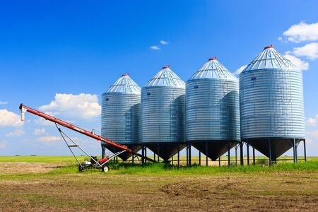 Steel grain silos used to store grain. photo