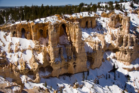 distinctive: Bryce Canyon National Park located in Utah, USA and is distinctive due to geological structures called hoodoos, formed by wind, water and ice erosion.