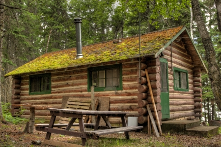 Log cabin surrounded by the forest at Duck Mountain Provincial Park in Saskatchewan, Canada Éditoriale