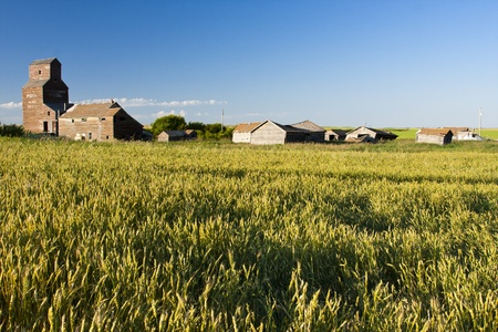 Vintage old-fashioned buildings abandoned in an old ghost town beyond a rural field Stock Photo - 12175182