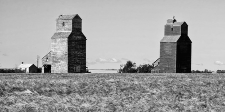 Two old grain elevators remain in the ghost town of Lepine on the Canadian prairies photo