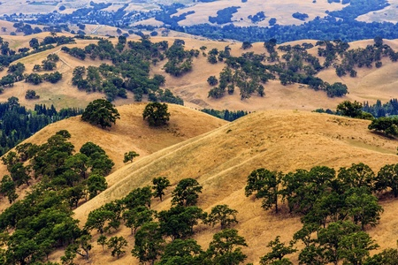 A view down the valley from Mount Diablo State Park, Clayton, California Stock Photo - 15329444