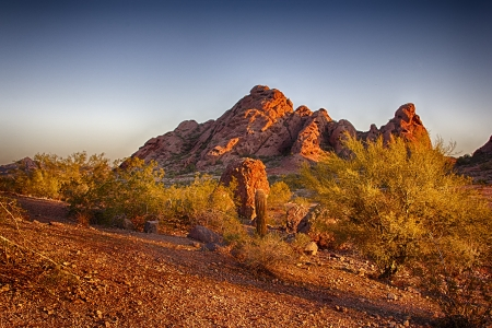 The sonoran desert landscape of the cacti and sandstone buttes at Papago Park in Phoenix, Arizona. Stock Photo