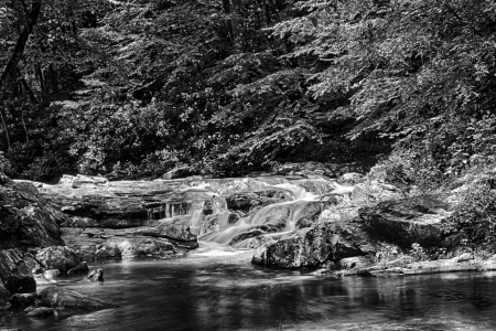 appalachian: Water flowing on Laurel Creek, Great Smoky Mountains National Park, Tennessee