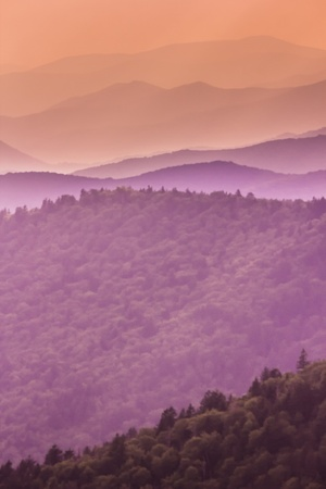 Amazing view from Clingmans Dome, Great Smoky Mountains National Park, Border of North Carolina and Tennessee photo