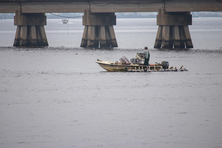 Crab Fisherman with Pelicans