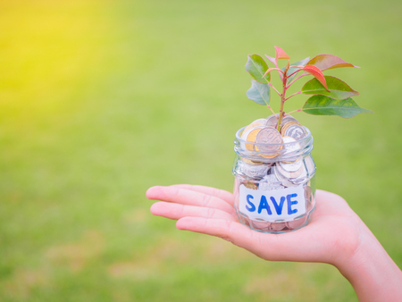 Women hand holding plant growing out of coins in glass jar on the green grass for money saving financial concept Stock Photo