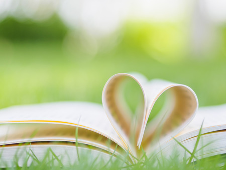 novel: book on table in garden with top one opened and pages forming heart shape Stock Photo