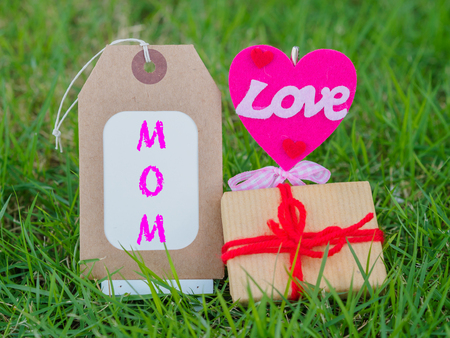 steel pan: mothers day concept.  LOVE MOM text with colorful heart and gift on green grass background