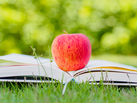 World Book Day concept. Red apple and pen put on open book