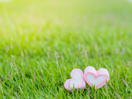 Love and Valentines Day concept. marshmallow in the shape of heart on green grass background