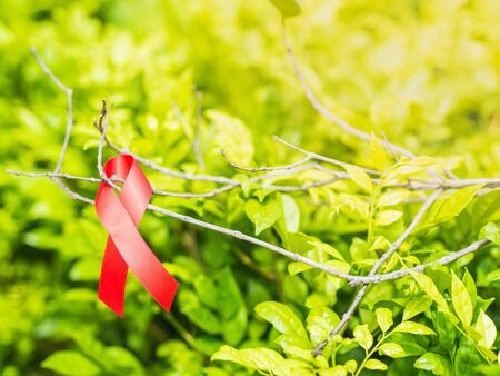 World AIDS day concept. Red ribbon hang on tree leaves bokeh background.