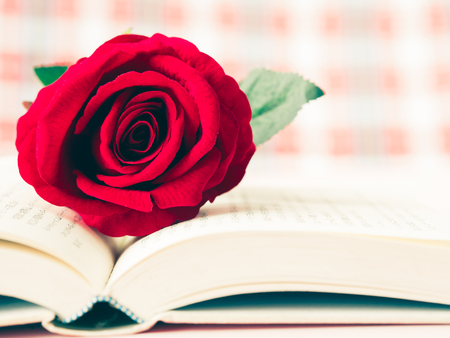Vintage retro of red rose on open book. LOVE and valentine's day concept.