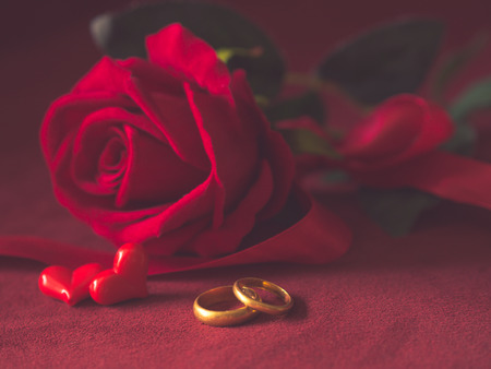 diamond ring: Low key close up of engagement rings and red roses on pink background. Love, proposal, valentines day and holidays concept. Stock Photo