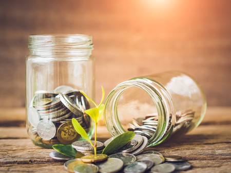 old desk: Soft focus baby tree with coins in glass jar on old wooden background. Business financce and saving money concpt.