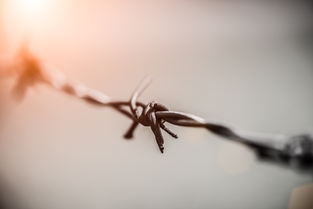 Close up rusty barbed for Human Rights and social justice abstract concept.