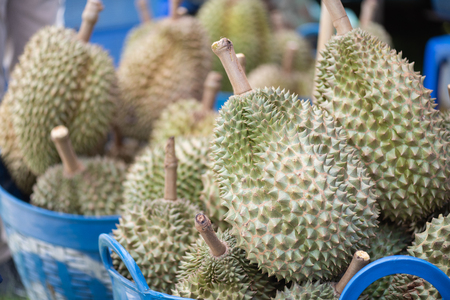Fresh asia Durian is in the basket. Durian is king of tropical fruit.