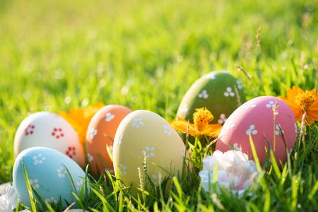 ¡Felices Pascuas! Closeup coloridos huevos de Pascua en nido en campo de hierba verde durante el fondo del atardecer.