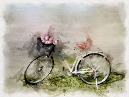 Watercolor painting Beautiful white bicycle with pink tulip on green grass field. illustration. Stock Photo