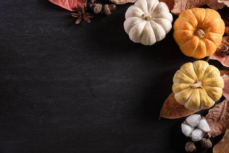 Draufsicht auf Herbstahornblätter mit Kürbis und roten Beeren auf schwarzem Holzhintergrund. Thanksgiving Day-Konzept.