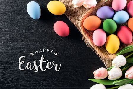 Frohe Ostern! Bunte Ostereier im Nest mit Tulpenblume und Feder auf schwarzem Holzhintergrund.