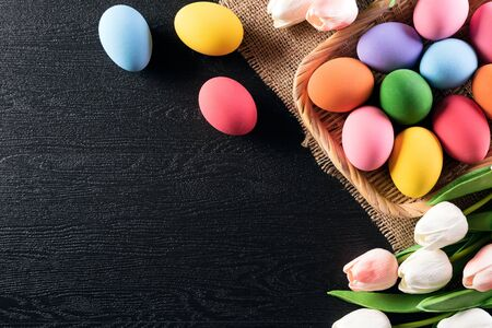 Happy easter! Colorful of Easter eggs in nest with tulips flower and Feather on wooden black background. Imagens