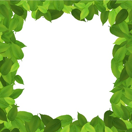 archway: Leaf border isolated background