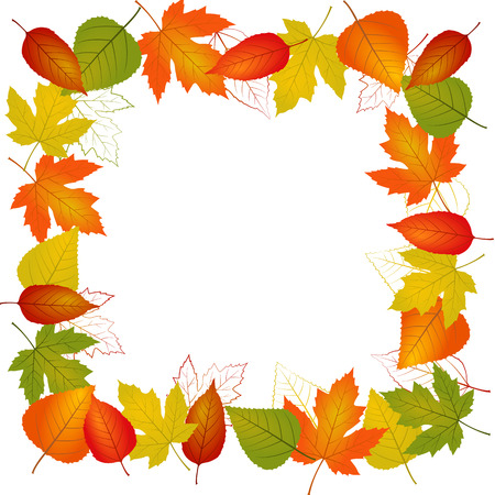 fall leaves border: Autumn vector leaf border illustration isolated from background