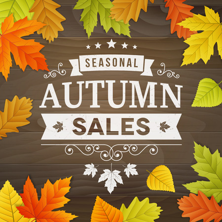 autumn leafs: big autumn sale business background with colored leafs on wood background. editable. isolated. Illustration