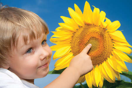 Beautiful little girl and sunflowers Stock Photo - 8162193