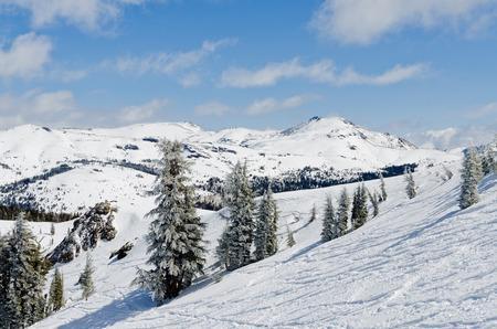 Beautiful winter landscape in the Lake Tahoe Area in Sierra Nevada photo