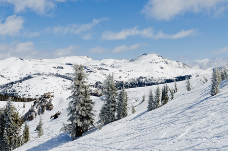 tahoe: Beautiful winter landscape in the Lake Tahoe Area in Sierra Nevada Stock Photo