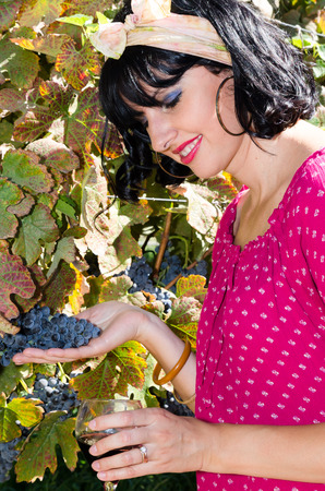 colorful dress: Beautiful woman in colorful dress during grapes harvest