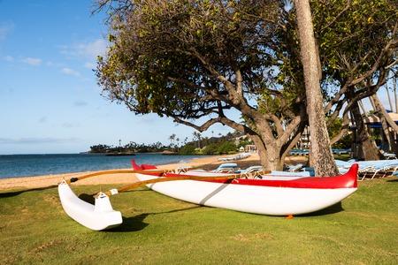 outrigger: Polynesian outrigger canoe on the beach in the morning