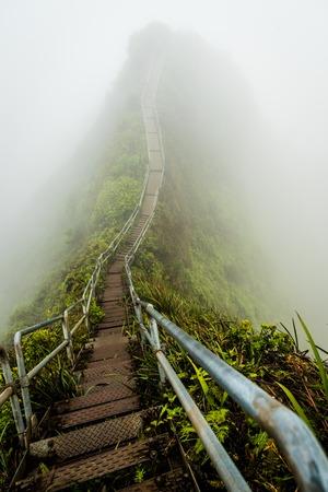 Fog covering Stairway to Heaven in Oahu island Hawaii