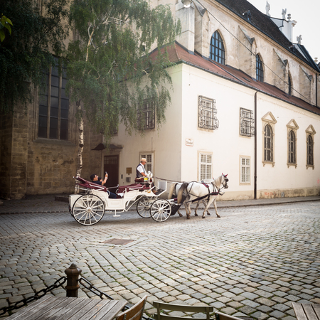 Traditional horse driven carriage on streets of Vienna historic Editorial