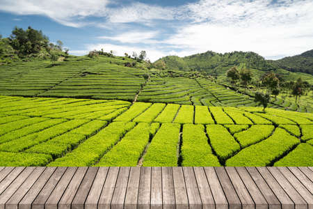 Wooden terrace walkway with green tea garden background, space for product or object presentation