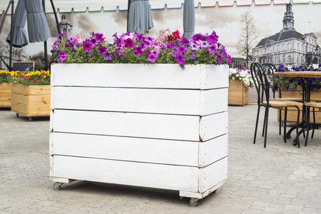 Beautiful terrace  with table, chair and flowers. Flowers in the design of a wooden flower bed near the cafe in the city Фото со стока