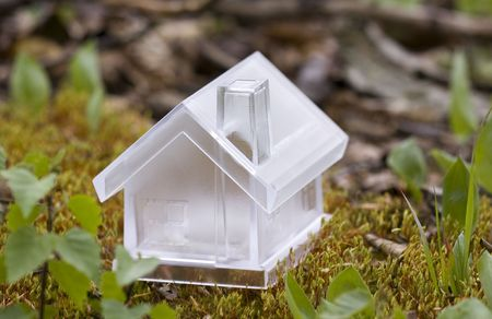 Crystal house over moss Stock Photo - 4991331