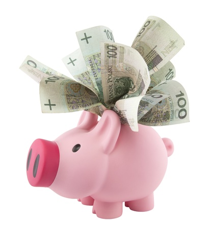 bank accounts: Piggy bank with polish money. Clipping path included. Stock Photo