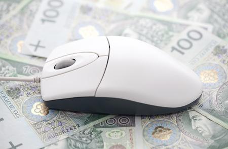 Computer mouse on polish money photo