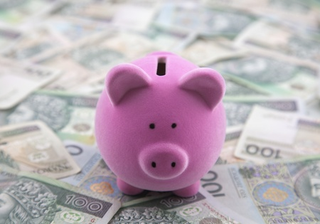 Piggy bank on polish money Stock Photo - 13087617