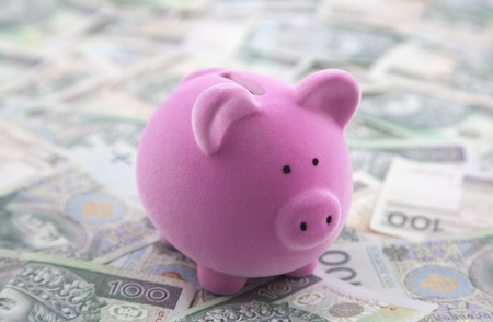 Piggy bank on polish money Stock Photo - 13087613