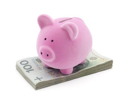 Piggy bank on polish money  Stock Photo - 13087604