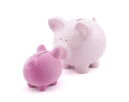 Two piggy banks photo