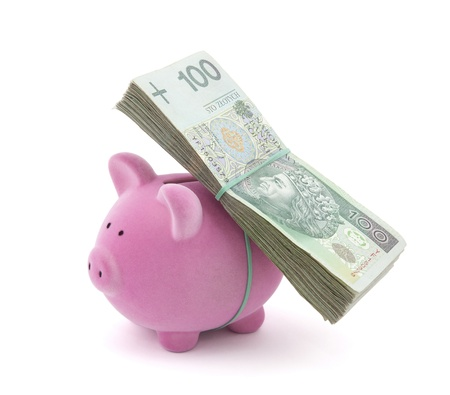 Piggy bank with polish money Stock Photo - 16259453