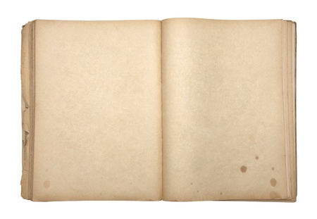 Open old blank book Stock Photo - 16259556