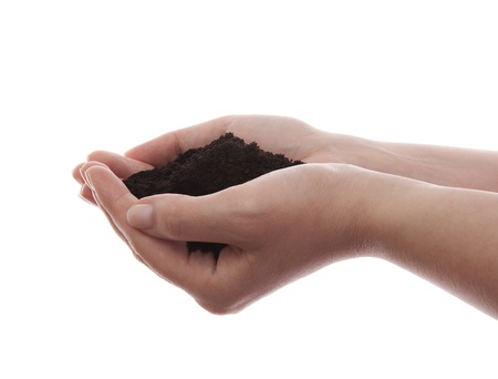 Soil in hands isolated on white Stock Photo - 16259324