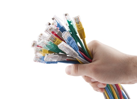 Hand holding colorful internet cables  Clipping path included
